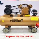 may nen khi day dai pegasus tm v 0.17/8 70l