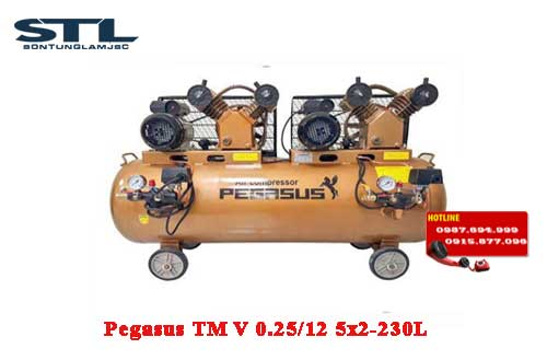 may nen khi day dai pegasus tm v 0.25/12 5x2 230l