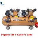 may nen khi day dai pegasus tm v 0.25/8×2 230l