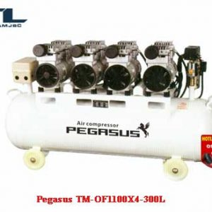 may-nen-khi-day-dai-pegasus tm of 1100x4 300l