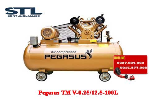 may nen khi day dai pegasus tm v 0.25/12.5 100l