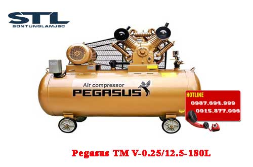 may nen khi day dai pegasus tm v 0.25/12.5 80l
