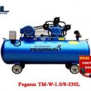 may nen khi day dai pegasus tm w 1.0/8 330l