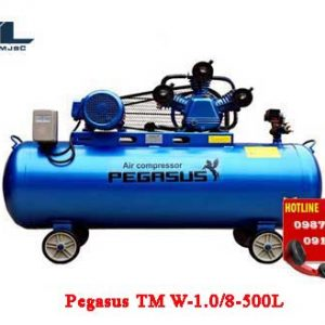 may nen khi day dai pegasus tm w 1.0/8 500l