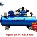 may nen khi day dai pegasus tm w 1.6/12.5 500l